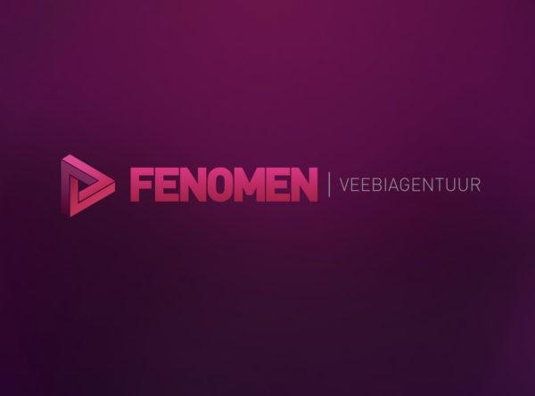 Veebiagentuur logo disainimine