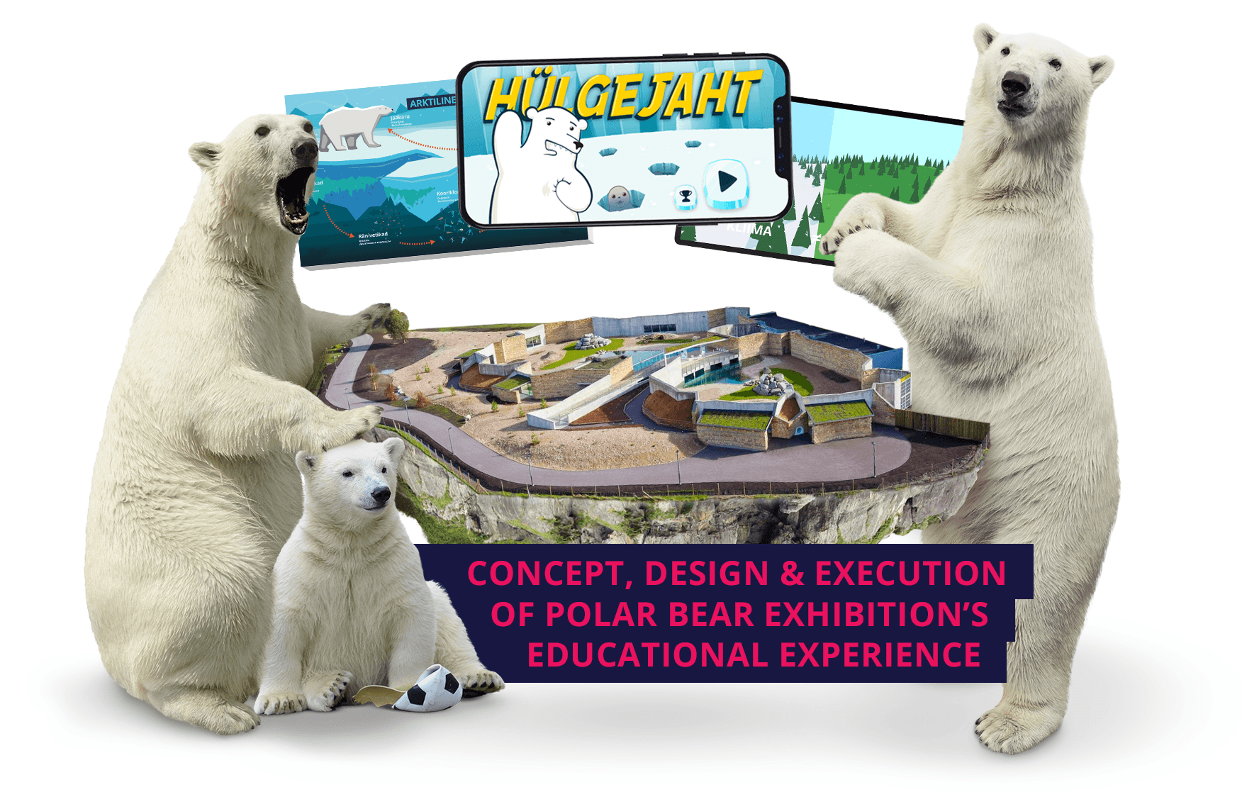 Concept, Design & Execution of Polar Bear Exhibition's Educational Experience