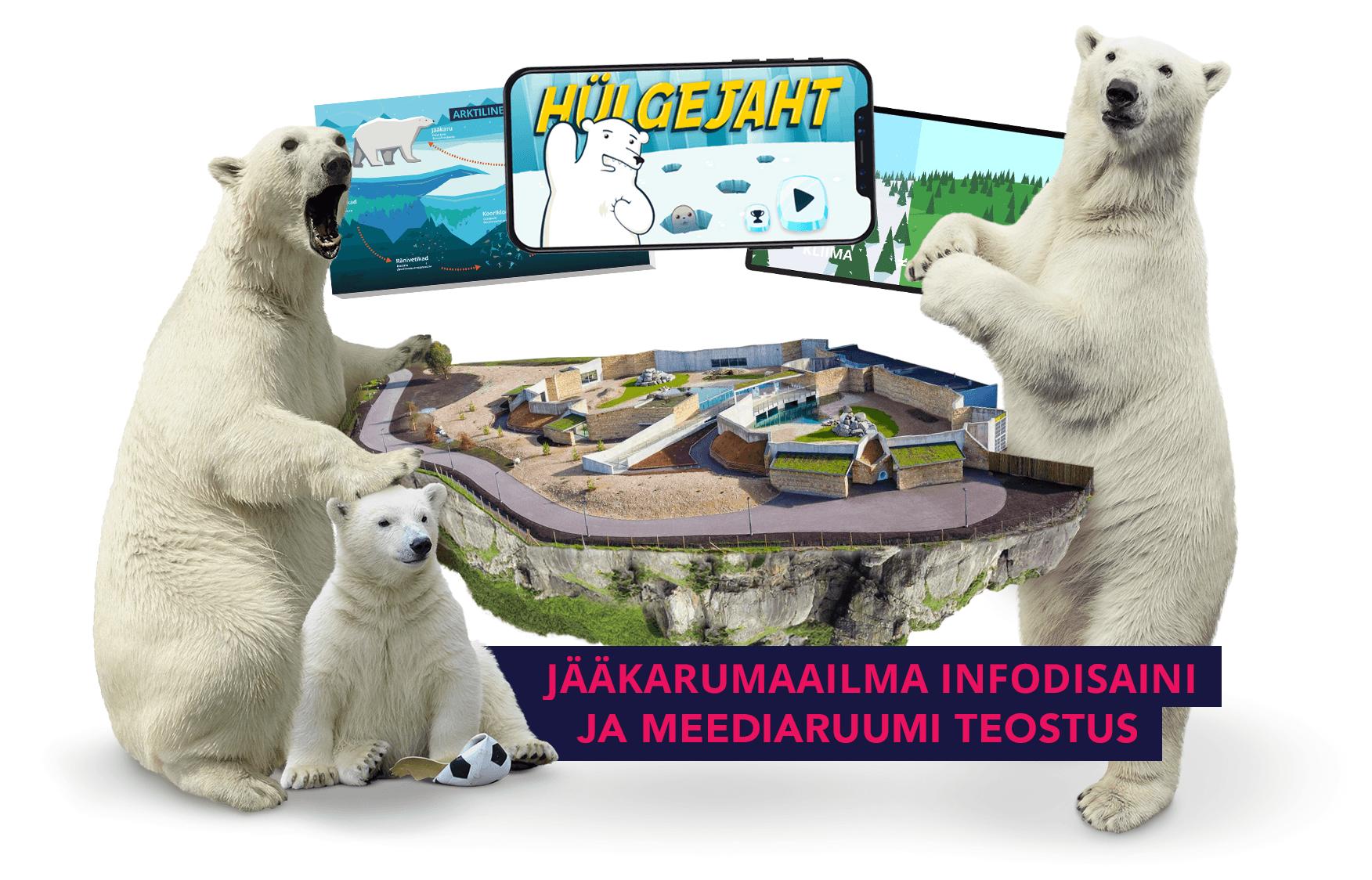 Jääkarumaailma infodisaini ja meediaruumi teostus