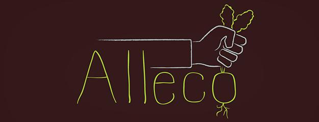 Alleco logo design visual identity